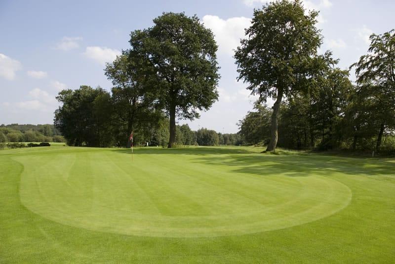 https://www.duhnen.de/wp-content/uploads/2020/09/Golf_Hainmuehlen_Green.jpg
